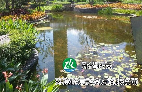 水生生态系统修复技术